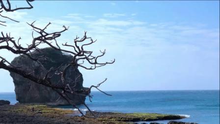 宝岛游(视频相册)快速