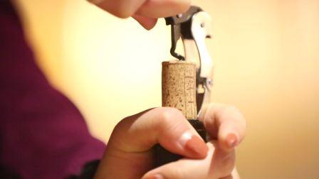 Farnese酒庄酒会|  Interprocom蒂维妮