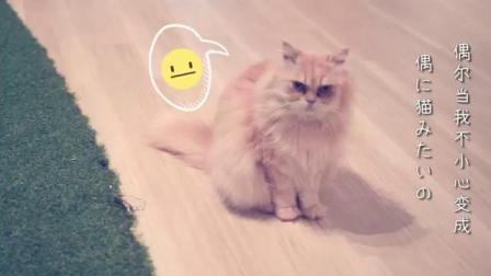 『学猫叫』日语版