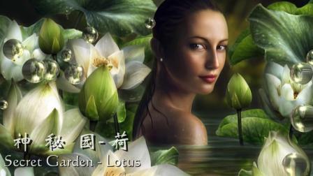 神秘园Secret Garden -荷Lotus