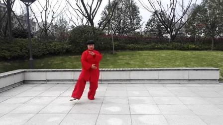 杨式38式太极拳(冬瓜茶演练2019.1.19)