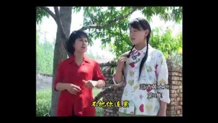 沂蒙小调=泪洒黄土地(全集)