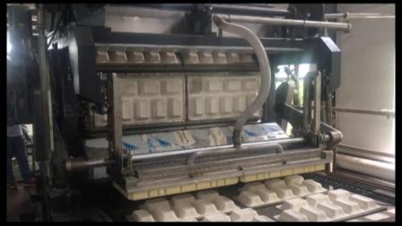 必硕科技—— 纸浆模塑设备全自动纸餐具生产线