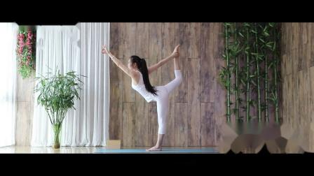 《荷心.瑜伽的修持》身心灵系列教程【第五篇.阳瑜伽】