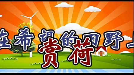沈北新区喜洋洋广场舞《在希望的田野上-赏荷》字幕1080p