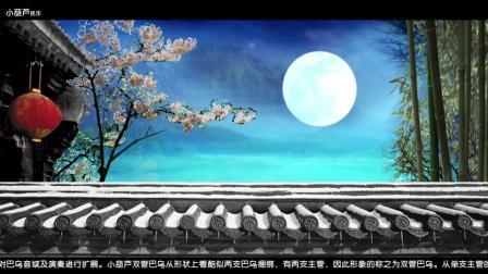 双管巴乌 荷塘月色- 小葫芦民乐 紫竹大D调双管巴乌演奏 小葫芦葫芦丝 巴乌演奏