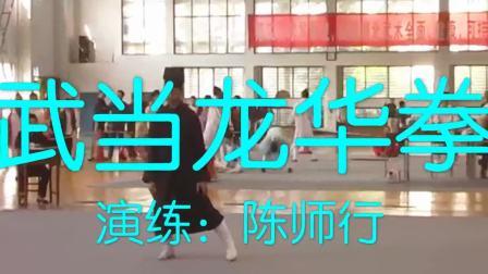 武当龙华拳-演练:陈师行