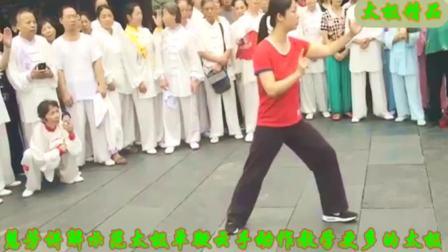 邱慧芳老师太极拳单鞭云手动作讲解示范