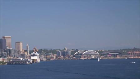 西雅图风光:矫捷的海鸥