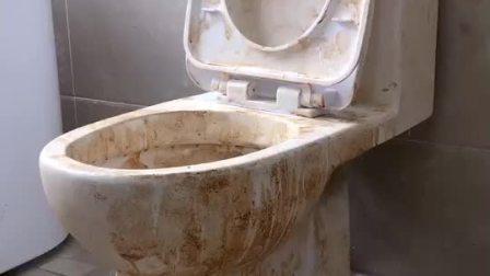 新租的房子的厕所鬼知道这马桶是经历了什么