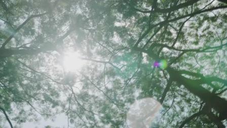 夏日炎炎,摘葡萄戏溪水凉席上吹风扇,住在村里好惬意!