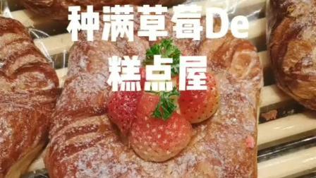 草莓控的最爱,还有6种口味的牛角包哦,哦不对,6种口味的可颂
