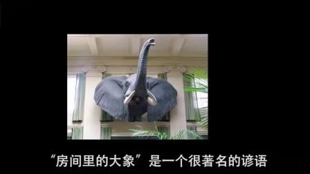 校园暴力就像房间里的大象,不要假装看不见。