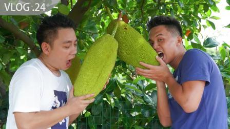 未成熟的菠萝蜜你吃过吗?全网首个菠萝蜜三明治来了