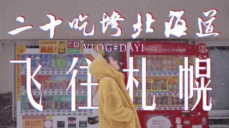 北海道攻略,干货速存!不会日语如何自由行?3k+机票怎么预定?如何点菜?