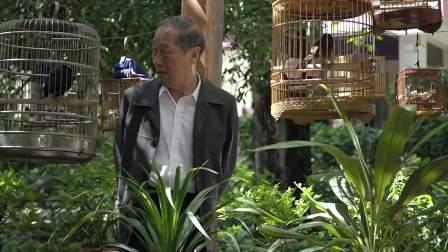 陈老收到很多花鸟,直接打电话给田国富,说要上交,对方都笑了!