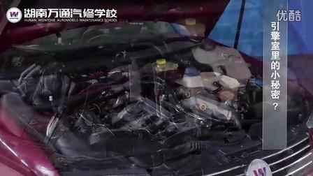 学修车|小汽车维修视频教学—引擎室里的小奥秘