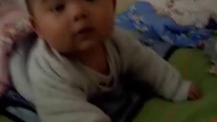 【四个月大】10-12哈哈趴着玩小布丁.AVI
