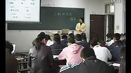 三颗枸杞豆徐文凯新课程初中语文优质课例教学实录课堂实录示范课