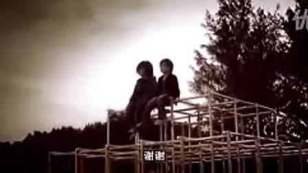 甄子丹系列高清DVD经典武打片龙虎门flv