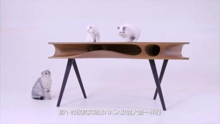 萌翻了 有个猫奴做了张桌子 竟然吸引了一群猫来玩 317