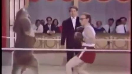 袋鼠 vs 伍迪艾伦 拳击比赛
