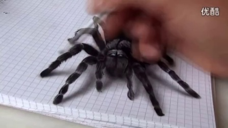AMAZING realistic illusion! 3D Spider Drawing_高清