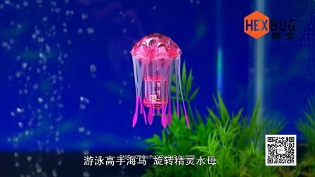 【赫宝海洋动物系列】水母和海马