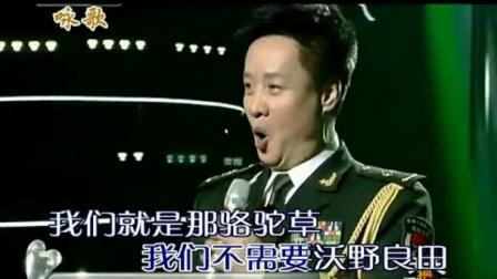 (2)骆驼草 阎维文KTV伴奏_高清