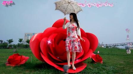 创意音乐视频《玫瑰花儿香》 云丹久美(61部)