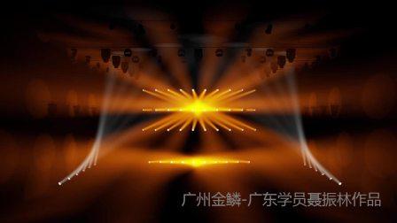 广州金鳞灯光师培训班聂振林作品