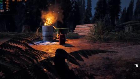 《孤岛惊魂5》PC版演示 GTX 1080 Ti