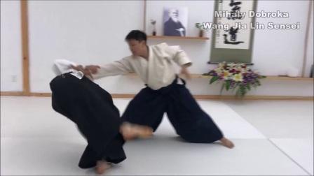 合气道练习在武汉-王家麟老师