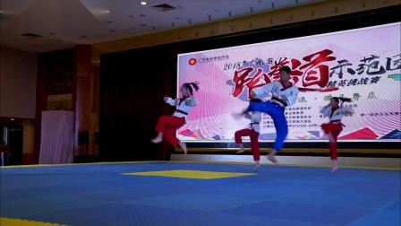 2018广东省跆拳道示范团精英挑战赛第一天录像回忆