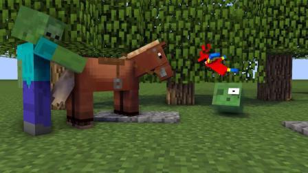 我的世界动画-宠物挑战-Paw Animation