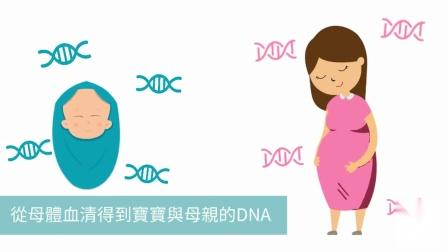 T21 无创基因检测介绍