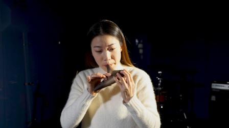 陶笛吹奏视频——《故乡的原风景》,赵方演奏