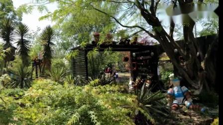 上海2019家庭园艺展(游梦花源摘记)