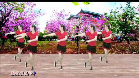 大自然广场舞《又见山里红》原创十六步附分解