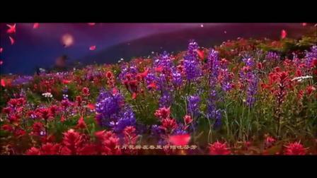 【飞来的花瓣- Flying petals】祝教师节快乐!