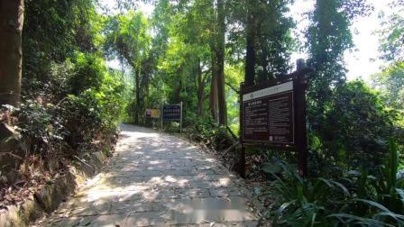 20191003记录爬山......东莞大岭山森林公园