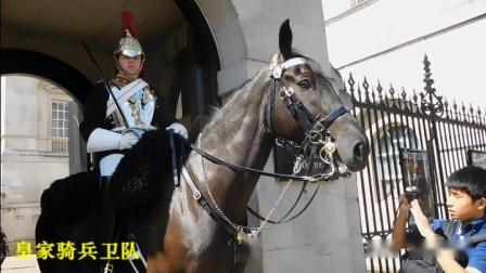 英国行《伦敦自游行--皇家骑兵卫队》(三)2019年8月。