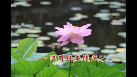 沈北新区喜洋洋广场舞《谁不说咱家乡好-赏荷》字幕1080p