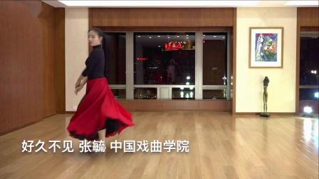 舞蹈 好久不见 中国戏曲学院 张毓