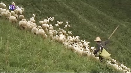 黄羊川Yellow.Sheep.River_wenfeixin