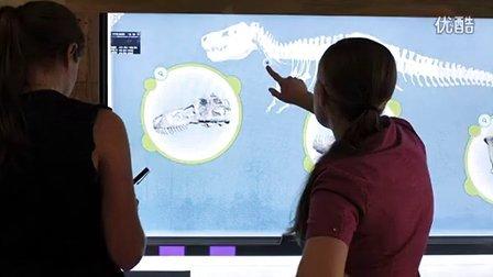 芝加哥菲尔德自然博物馆交互恐龙骨架