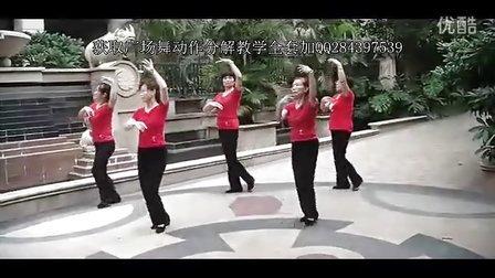 广场舞教学分解动作视频 中老年广场舞荷塘月色