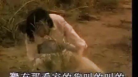 经典老歌:篱笆墙上的影子《辘轳,女人和狗》 片头主题曲