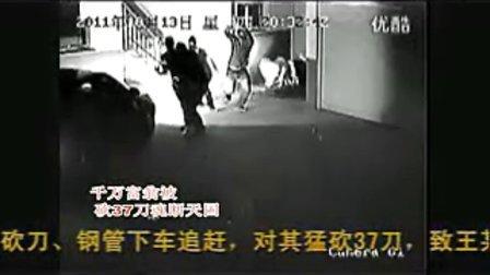 唐河千万富翁被砍37刀真实杀人视频