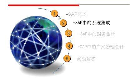 SAP讲解_录像1SAP整体介绍